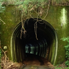 廃線のトンネル跡 宮原(みやのはる)線 大分県玖珠郡九重町菅原