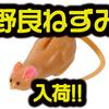 【ティムコ】AbemaTVワールドチャレンジでも各プロが使用していた「野良ネズミ」通販サイト入荷!