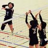 東日本インカレ -女子バレー2回戦から準決勝みて来た-