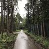 シャワー林道ラン🏃♂️