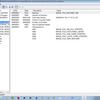 RPISEC Malware Lab#01 をやった