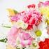 花を買う事に躊躇う事がなくなった-花なんてどうせすぐに枯れるから一番無駄なものと思っていた頃