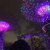 ビンボーリュクサッカーでも安心!無料で楽しめるシンガポールのお楽しみスポット!