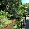 六郷用水を歩く その2 次大夫堀公園から亀甲山・丸子川終端まで