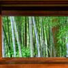 【Portfolio】窓