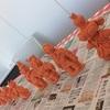 【土偶を作ろう】2月の土偶婚活パーティー【新宿で募集】
