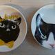 今日の黒猫モモ&白黒猫ナナの動画ー853