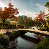 北陸周辺(福井・石川・富山・白川郷)の紅葉風景 - Autumn leaves of Hokuriku Japan
