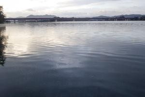 今季3度目の紀ノ川