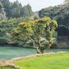 長野ため池(長崎県壱岐)