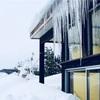 初雪の東京 平年より1日遅い 2020年は暖冬?