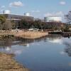 水すましの池・春の泉(大阪府吹田)