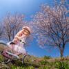 今週も桜とドール撮影してきました😊