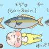 生後4カ月の身長体重は?出世魚に見る我が子の成長。
