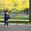 1歳4ヶ月、パンくんが歩いた!(;_:)