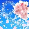 2月15日は「春一番名附けの日」~春一番ってなんなのさ?~