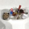 【化粧品の収納をご紹介】ダイソープラスチックケース使用しています!