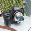 オールドレンズの W-NIKKOR・C 3.5cm F2.5(L)で撮影した写真を多めに紹介。