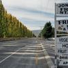 3 NZ南島初レンタカー旅行記 フルーツの町クロムウエル