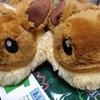 【製品レビュー】amazon再入荷!イーブイのMOFU-MOFUスリッパ は履けるぬいぐるみ / eevee slippers