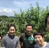 """小さいけれど大きな一歩。神戸市西区、押部谷の桃で""""おいしい""""を届けます!"""
