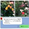 防犯カメラにバッチリ 警察の訪問!!!