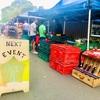 月の最後の日曜日はTitirangi Marketへ行こう