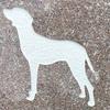 【提言】ペットのお墓について考えてみたい ~当事者たちの深刻な問題。悩んでいる方々へ~