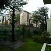 今の自宅の裏庭