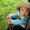 子供は大人の想像の上を行く。赤ちゃんだからって侮れない。 #赤ちゃん行動 #子供の行動 #はぐれる