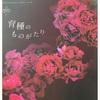 またまたバラ苗を〜〜😅ポチッとしちゃいました〜💦