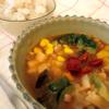 『ベジ活スープ食ミネストローネ』実際に食べてみた!【ウェルネスダイニング】