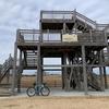 今年の初ライドは渡良瀬遊水地へリベンジサイクリング