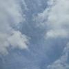 年金機構からのお知らせと突然のひとり介護と蚊取り線香【日本の夏】