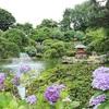 【茨城観光】第45回水戸のあじさいまつりに行ってきました。