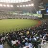 今年初の野球観戦!敵地・埼玉メットライフドームへ行ってきました!