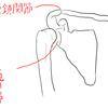 腕は本当は長かった!~腕の意識を広げよう!胸鎖関節を巡る旅~