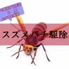 スズメバチ駆除、自分で駆除する方法&おすすめ業者【危険につき、見つけ次第】