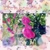 バラは天然の美容液!花のかおりのある生活に憧れます!
