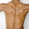 """""""肩・肩甲骨の動き""""を劇的に良くする【僧帽筋・菱形筋】のトレーニング方法とは?"""