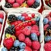 免疫力がUPする腸内細菌環境(マイクロバイオーム)を整える食事。糖質制限だけじゃ足りない理想のメニューやおすすめ本。