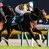 タコイチの【勝負レース回顧】東京スポーツ杯2歳S!