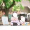 【5歳差姉妹育児】別行動多めだった2021GW