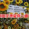 羽田空港観察記 ~Aug. 2019 (Sunflower)~