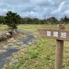 宮の森総合公園 菖蒲池(長崎県奈留島)