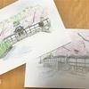 桜の絵の描き方を『水彩画プロの裏ワザ』を参考にしてみた!コツは?