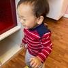 【助産師のヒトリゴト〜アメリカでの1歳半健診編〜】