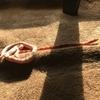 蛇(コーンスネーク)を飼った場合の電気代