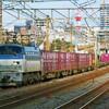 11月19日撮影 東海道線 平塚~大磯間 貨物列車4本撮影