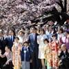 桜を見る会報道・・トップニュース